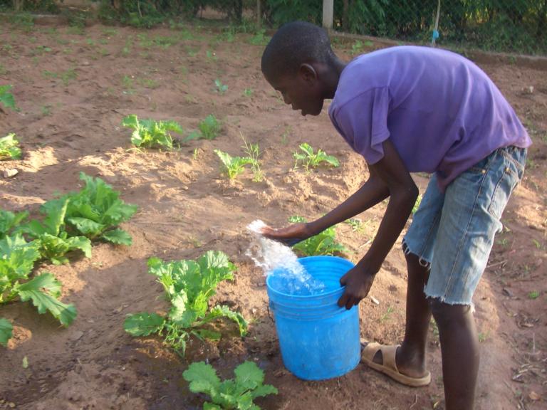 De kinderen leren zelfvoorzienend te worden. De jongens zorgen voor de kippen, onderhouden een moestuin en 's avonds helpen ze bij het koken van de maaltijd.